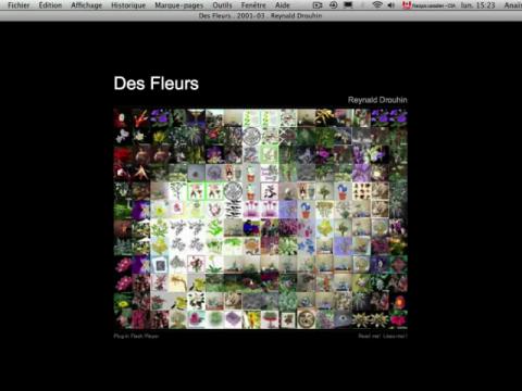 Des Fleurs (navigation filmée #1)