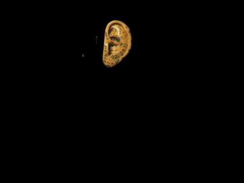 Hearing Loss (navigation filmée #1)