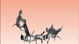 Cat bounce, Tara Sinn, Vidéo 1